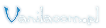 Vanilacom.pl - obsługa informatyczna firm